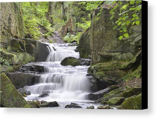 Landscape Canvas Print featuring the photograph The Stillness Of Life by Jonathan Oldham
