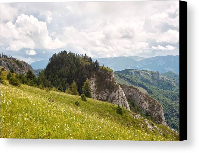 Rocks Canvas Print featuring the photograph The Wooded Tor by Daniel Marius Aron