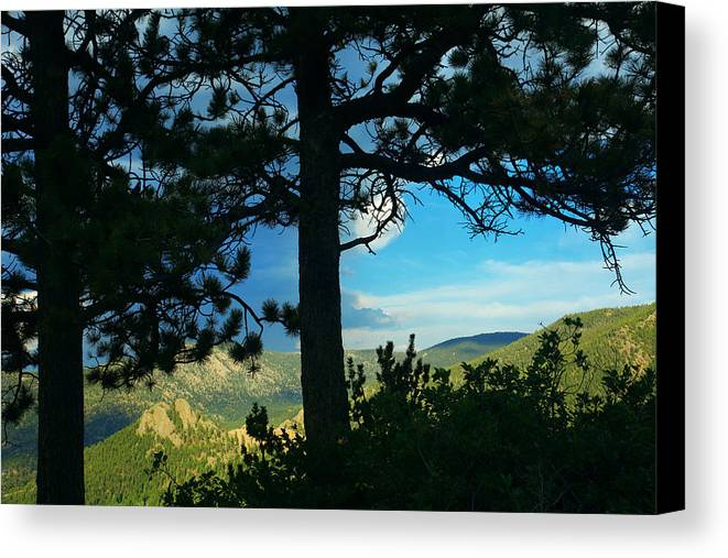 Estes Park Valley Canvas Print featuring the photograph Through The Pines by Mike Flynn