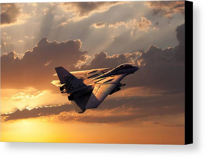 Aviation Canvas Print featuring the digital art Timeless Beauty Tomcat by Peter Chilelli