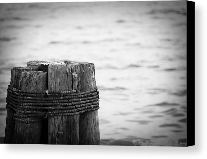 Ocean Canvas Print featuring the photograph Together by Toni Hopper