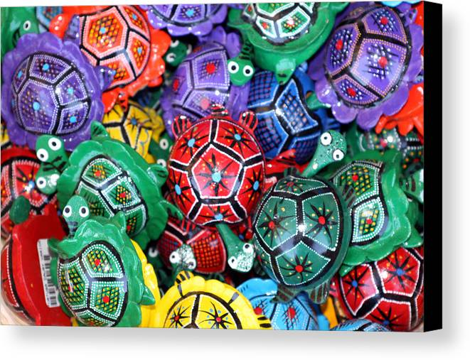 Mexico Canvas Print featuring the photograph Turtles Turtles Everywhere Cozumel Mexico by Lee Vanderwalker