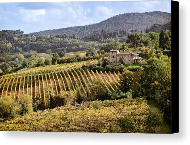 Tuscany Canvas Print featuring the photograph Tuscan Valley by Dave Bowman