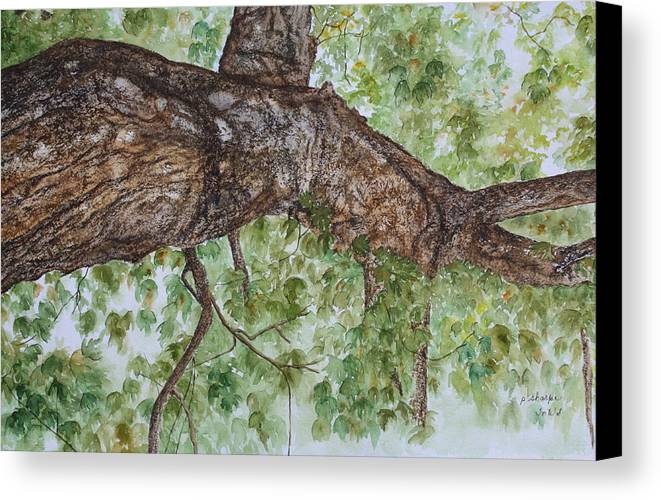 Nature Canvas Print featuring the painting Twisted Maple by Patsy Sharpe