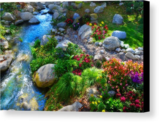 Beauty Canvas Print featuring the photograph Unseasonable Beauty by Lynn Bauer