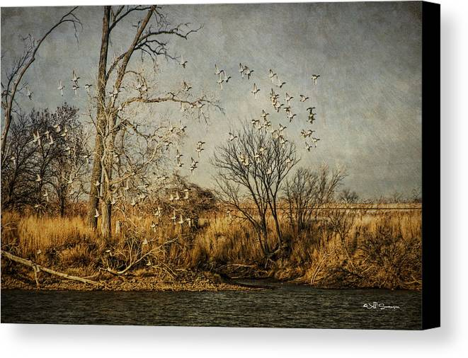 Ducks Canvas Print featuring the photograph Up Up And Away by Jeff Swanson