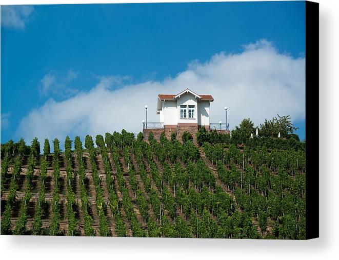 Villa Canvas Print featuring the photograph Villa In Vineyards by Frank Gaertner