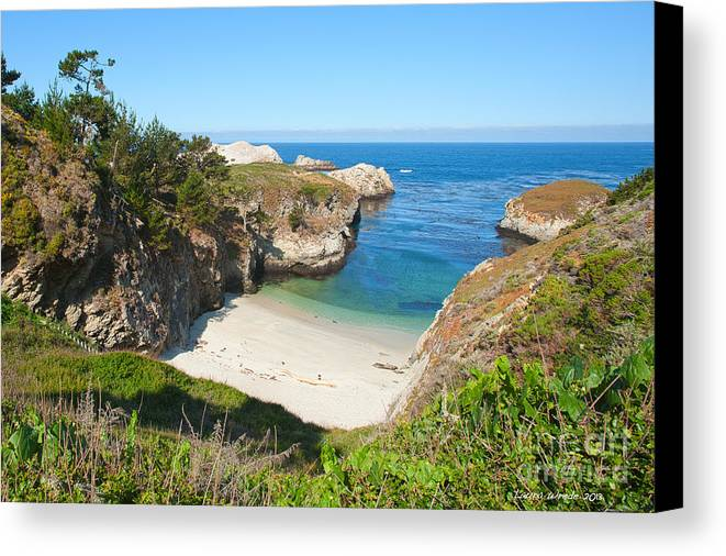 Point Lobos Canvas Print featuring the photograph Vista Of China Cove At Point Lobos State Reserve California by Artist and Photographer Laura Wrede