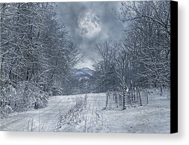Haunted Canvas Print featuring the photograph Visual Quiet by Betsy Knapp