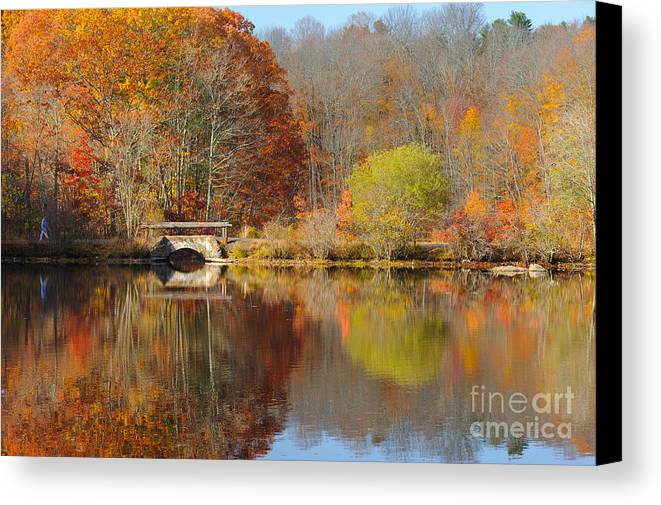 Fall Colors Canvas Print featuring the photograph Walking by Fran McMullen