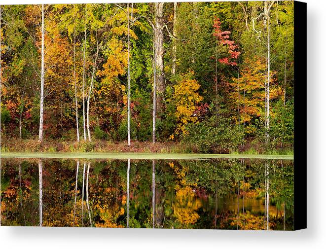 Walnut Creek Lake Canvas Print featuring the photograph Walnut Creek Lake Autumn Reflection by Nathaniel Kidd