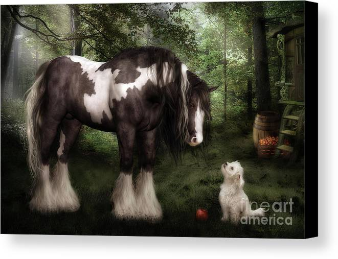 Gypsy Vanner Horse Canvas Print featuring the digital art Want To Play by Shanina Conway