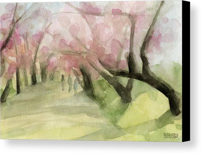 Cherry Blossom Canvas Print featuring the painting Watercolor Painting Of Cherry Blossom Trees In Central Park Nyc by Beverly Brown Prints