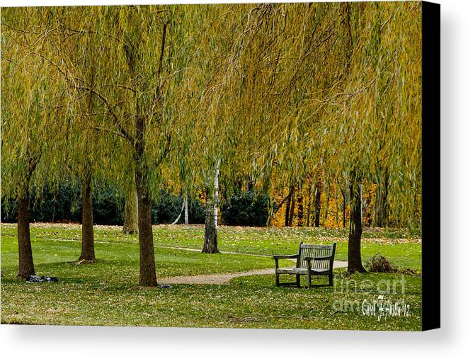 Weeping Willow Tree Landscape Canvas Print / Canvas Art by Carol F ...