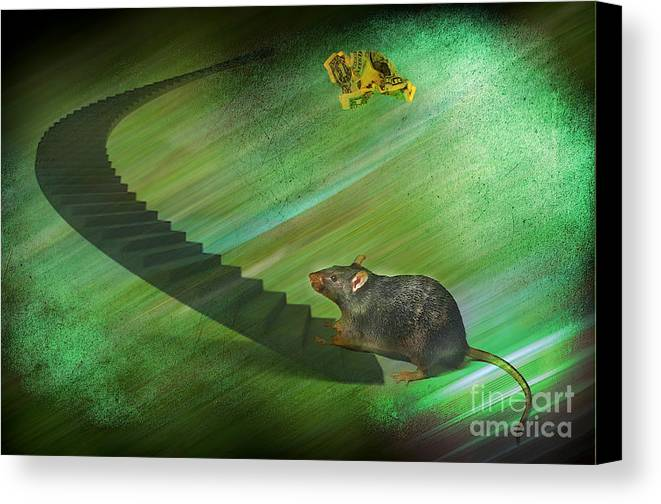 Race Canvas Print featuring the photograph Welcome To The Race...... by The Stone Age