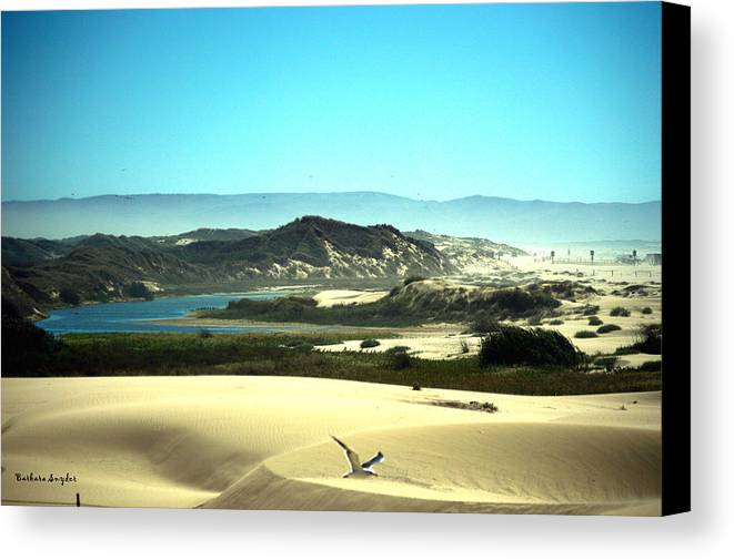 Barbara Snyder Canvas Print featuring the digital art Wetlands In The Dunes by Barbara Snyder