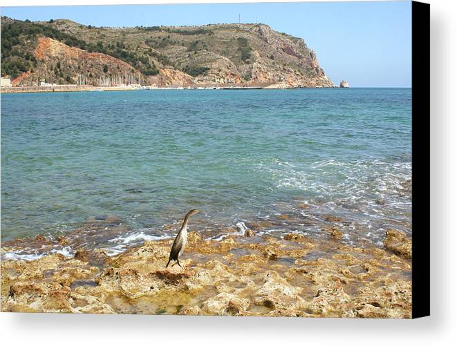 Javea Canvas Print featuring the photograph When In The Wild Is Not by Gaile Griffin Peers