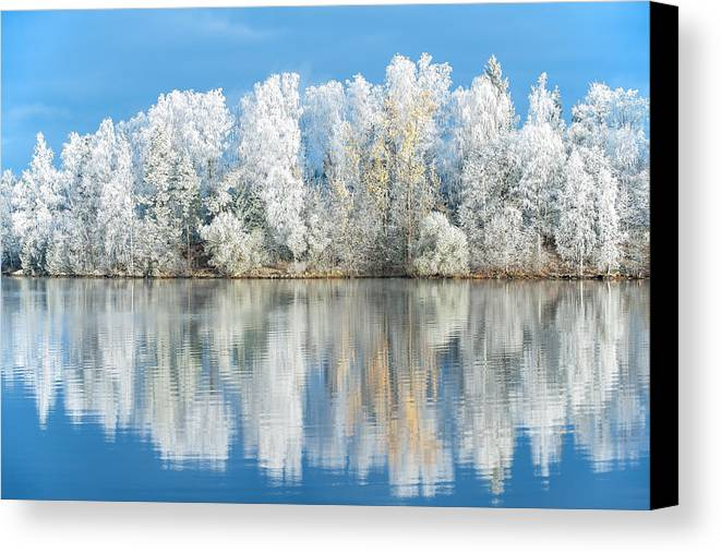 Frost Canvas Print featuring the photograph White Frost by Ari Salmela