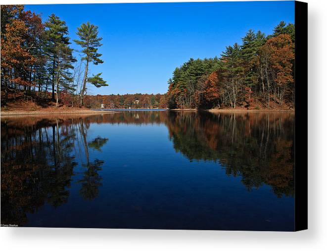 Pond Canvas Print featuring the photograph Whites Pond by Corey Sheehan