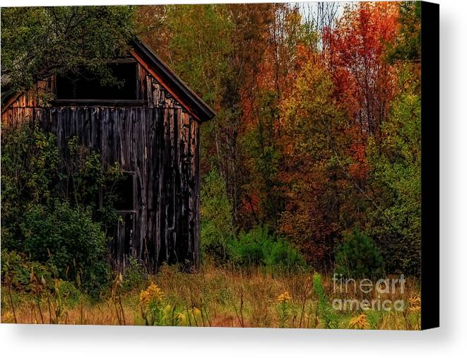 Barns Canvas Print featuring the photograph Wilderness Barn by Brenda Giasson