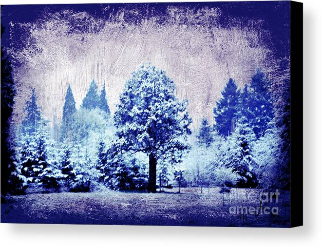 Winter Canvas Print featuring the photograph Winter Blues by Mindy Bench