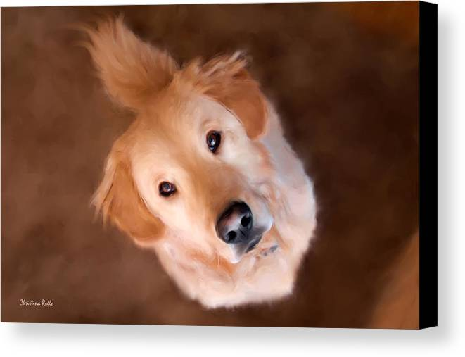 Golden Retriever Canvas Print featuring the painting Wishful Thinking by Christina Rollo