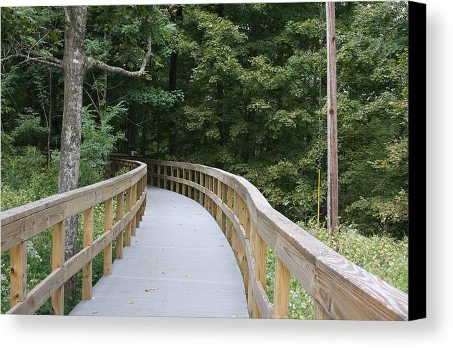 Paths Canvas Print featuring the photograph Wooded Walkway by Shari Bailey