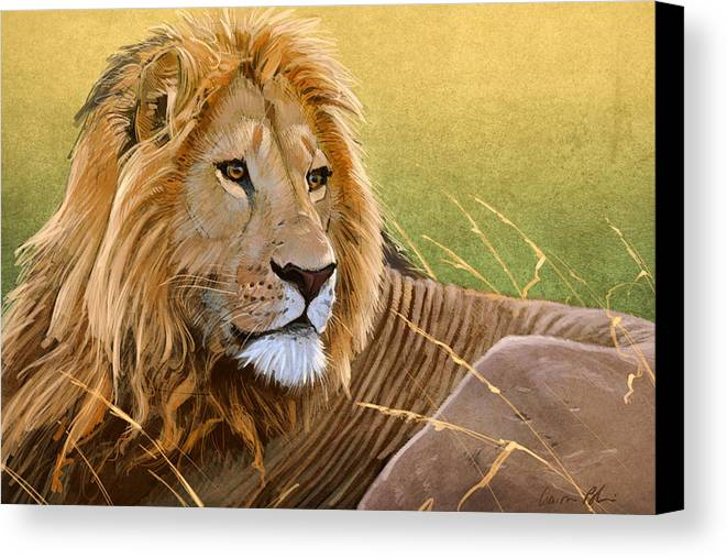 Lion Canvas Print featuring the digital art Young Lion by Aaron Blaise
