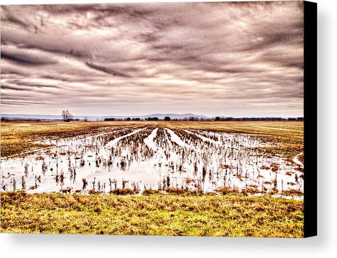 Sky Canvas Print featuring the photograph 0704-8703 Winter Clouds At Holla Bend Wildlife Refuge by Randy Forrester