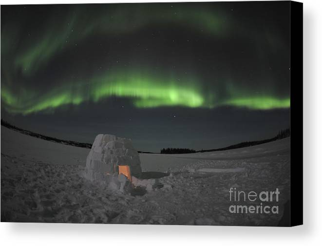 Yellowknife Canvas Print featuring the photograph Aurora Borealis Over An Igloo On Walsh by Jiri Hermann