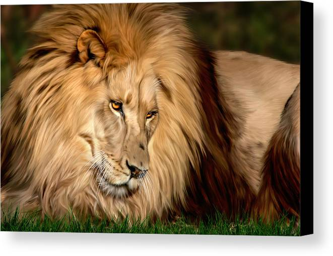 Cameron Canvas Print featuring the digital art Cameron by Big Cat Rescue