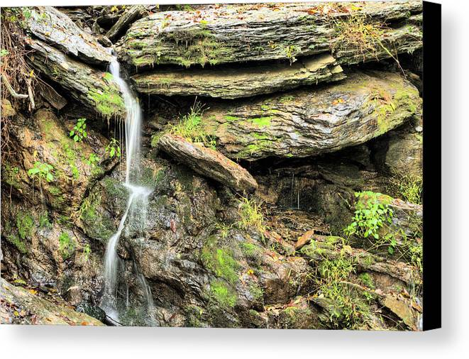 Waterfall Mountain Mountains Creek Stream Spring Fed Natural Nature Harpers Ferry West Virginia Wv Va Md Maryland Potomac Shenandoah River Rivers Basin Watershed Falling Waters Canvas Print featuring the photograph Falling Waters by JC Findley
