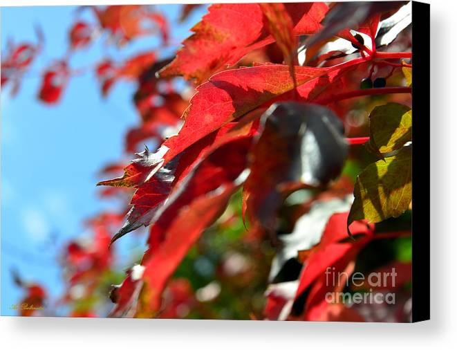 Autumn Canvas Print featuring the photograph Hot Autumn Leaves by Arik Baltinester