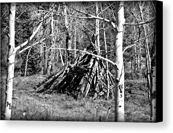 Sticks Canvas Print featuring the photograph Hut by Treena Bridges