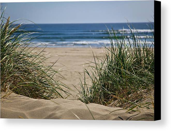 Sand Dunes Canvas Print featuring the photograph Ocean View With Sand by Athena Mckinzie