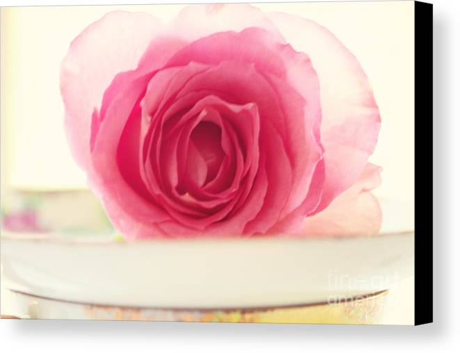 Rose Canvas Print featuring the photograph Pink Rose And Teacup by Kim Fearheiley