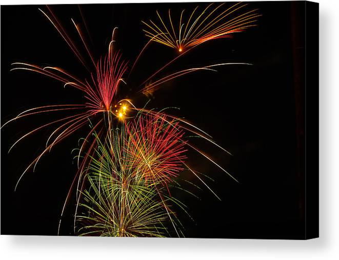 4th Of July Canvas Print featuring the photograph Sky Flowers by Joshua Dwyer