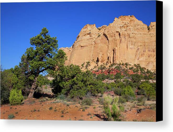 Southern Utah Canvas Print featuring the photograph San Rafael Swell by Southern Utah Photography