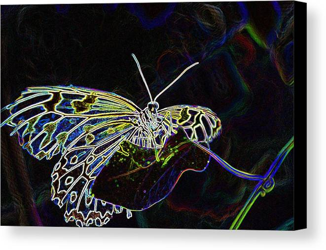 Photoshop Canvas Print featuring the photograph Colorful Butterfly by Werner Lehmann