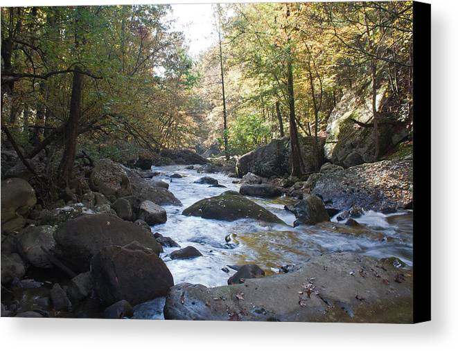 Laurel Creek Canvas Print featuring the photograph Laurel Creek by David Troxel