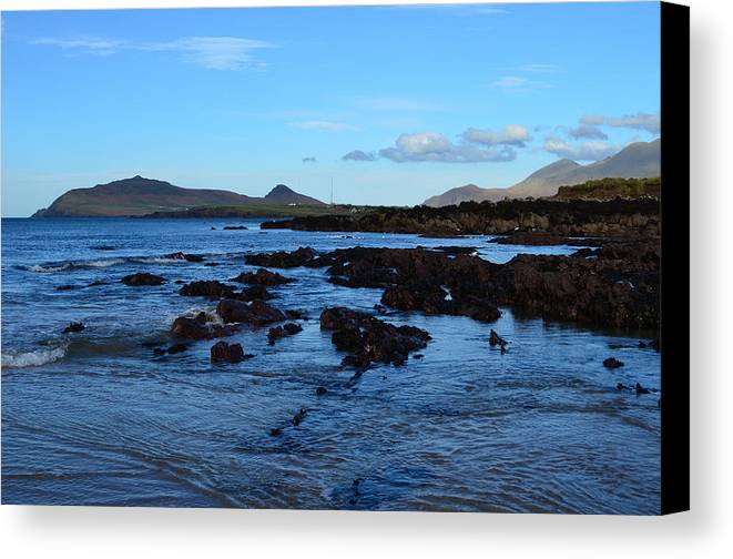 Winestrand Canvas Print featuring the photograph Winestrand by Barbara Walsh