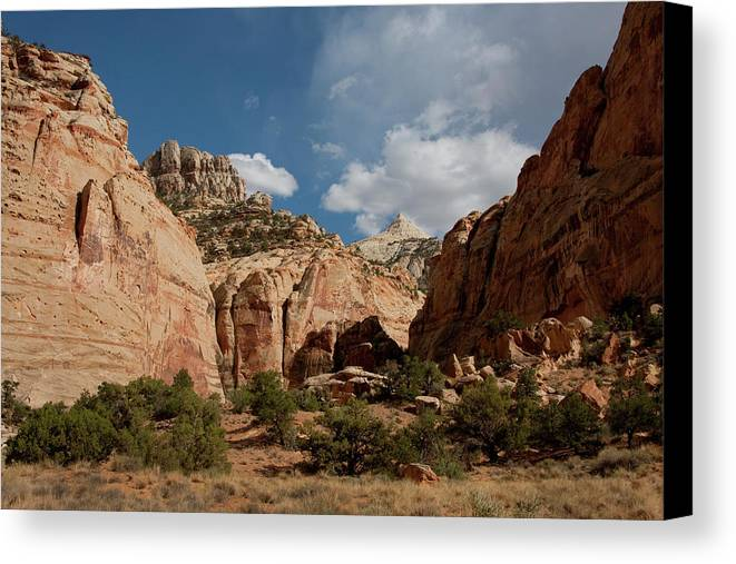 Southern Utah Canvas Print featuring the photograph Capitol Reef National Park by Southern Utah Photography