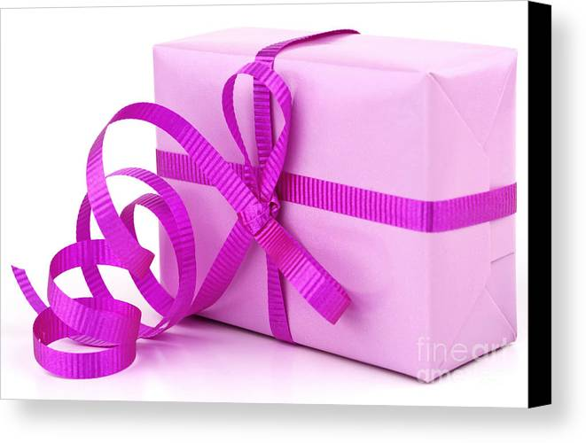Gift Canvas Print featuring the photograph Pink Gift by Blink Images