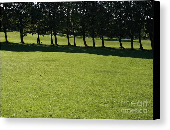 Green Black Landscape Canvas Print featuring the photograph A Walk In The Park.. by Andy Mercer