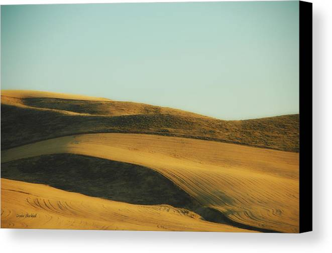 Grain Canvas Print featuring the photograph Amber Waves Of Grain by Donna Blackhall