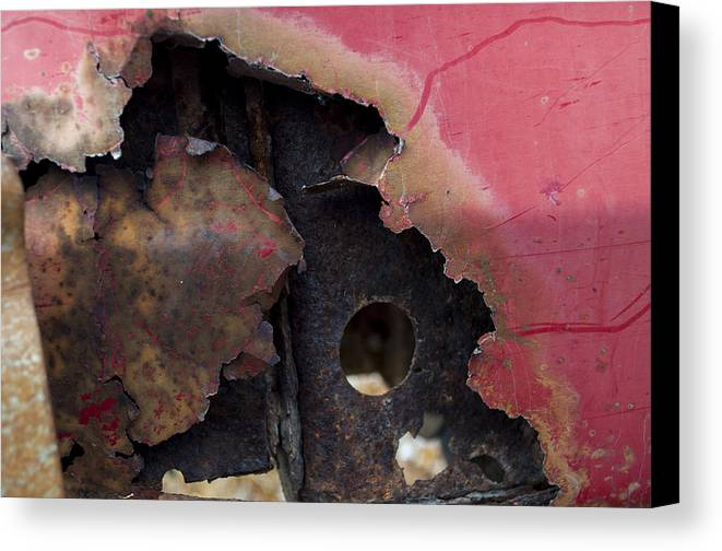 Abstract Canvas Print featuring the photograph Ap19 by Fran Riley