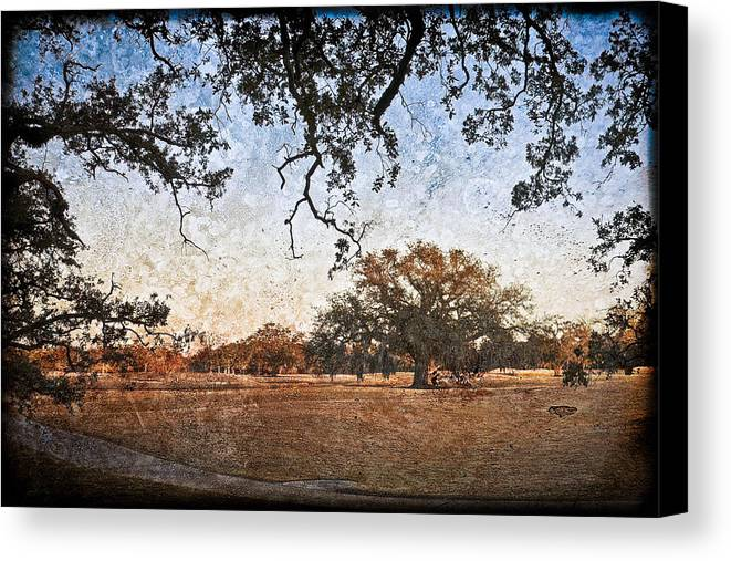 Texture Canvas Print featuring the photograph Audubon Golf Course by Ray Devlin