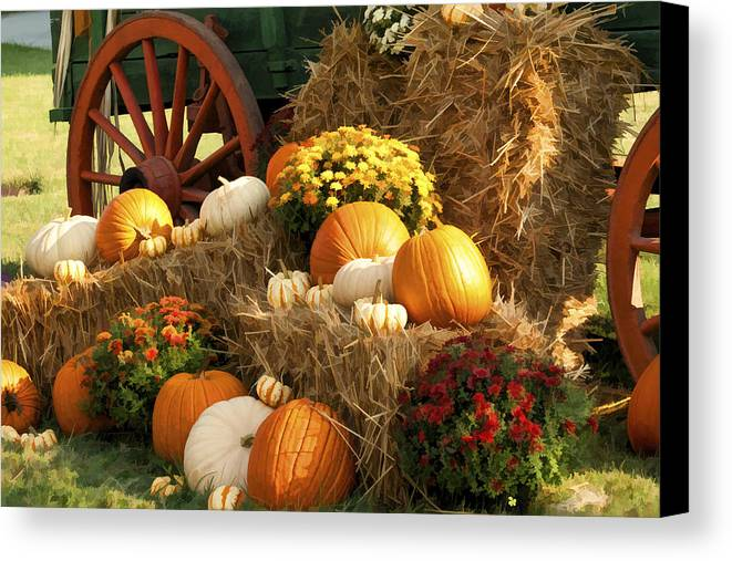 Buzz Canvas Print featuring the photograph Autumn Bounty by Kathy Clark