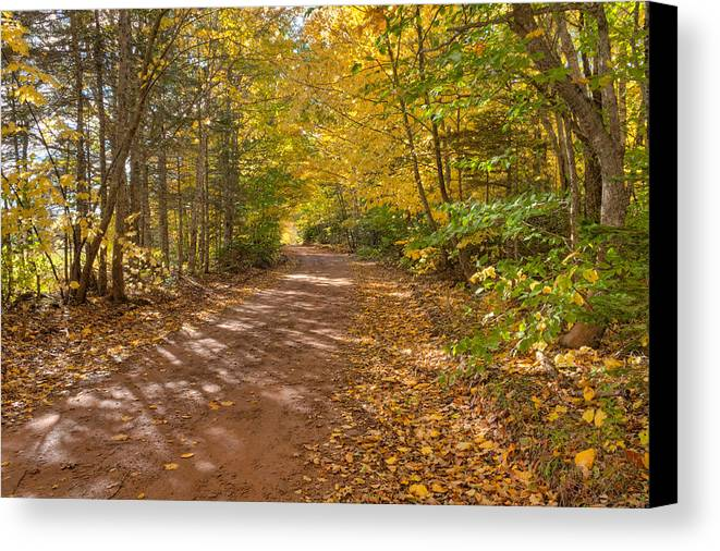 Autumn Canvas Print featuring the photograph Autumn Foliage On A Country Road by Matt Dobson