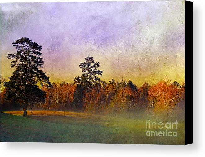 Mist Canvas Print featuring the photograph Autumn Morning Mist by Judi Bagwell
